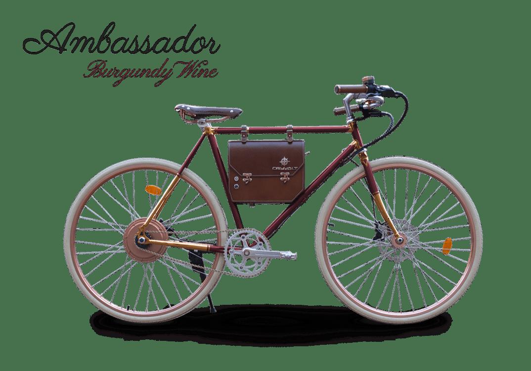 ambassador_f